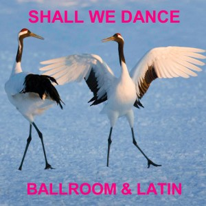 shall we dance for website
